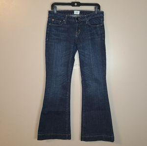 2/$35🔥Hudson Jeans, Flare Leg, Size 29
